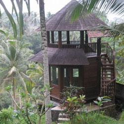 rumah kayu unik dan cantik