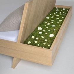 dan Cara Membuat Taman Kecil di Tempat Tidur Cara Membuat Lampu Tidur ...