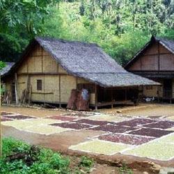 Download this Arstiektur Rumah Badui Yang Alami picture